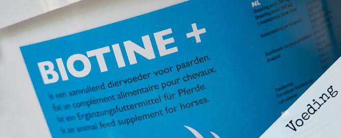 Biotine voor paarden